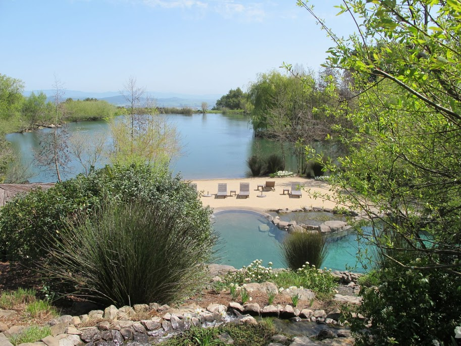 Pool in a lake